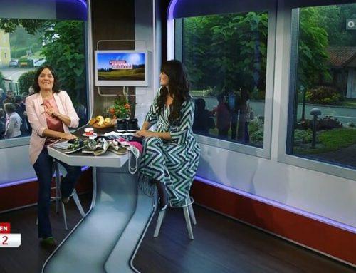 """""""Guten Morgen Österreich"""" ORF vom 10. September 2019 // Burgenland"""